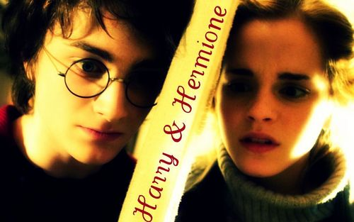 Harry and Hermione wallpaper entitled Harry & Hermione