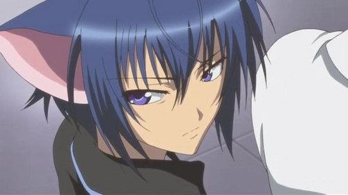 Ikuto Tsukiyomi wallpaper probably containing anime called Ikuto<3