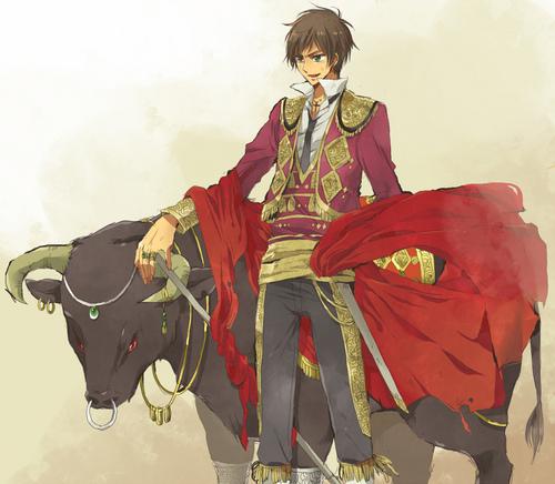 Matador!Spain