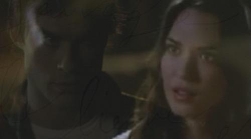 更多 Damon/Meredith
