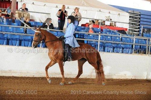 花生 At Carousel Charity Horse 显示