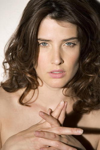 Robin Scherbatsky wallpaper with a portrait and skin entitled Robin Scherbatsky