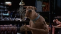 Scooby-Doo! - scooby-doo wallpaper