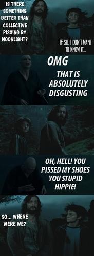 Sirius pwns Voldemort :D