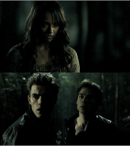 Stefan, Bonnie and Damon