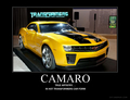 CAMARO! XD - camaros photo
