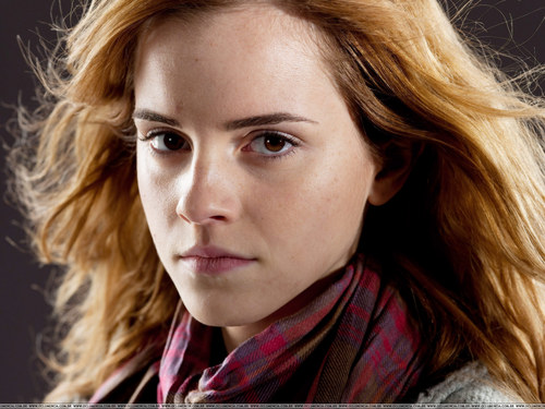 Hermione Granger wallpaper containing a portrait called DH Promo Pics