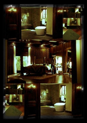 Damon Salvatore wallpaper possibly with a brasserie, a kitchen, and a drawing room entitled Damon's room