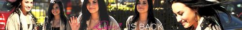 Demi Lovato banner