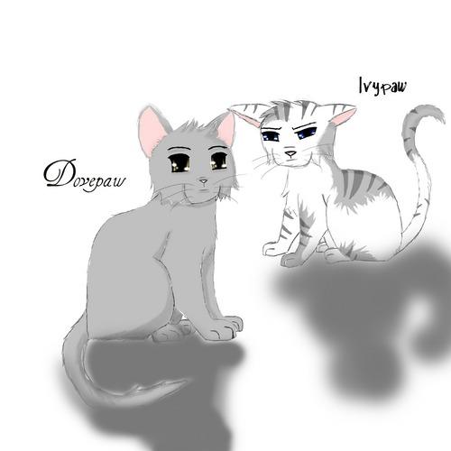 Dovepaw&Ivypaw
