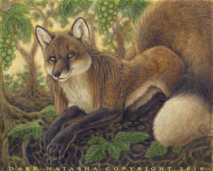 Fable: The fox, mbweha and the Grapes