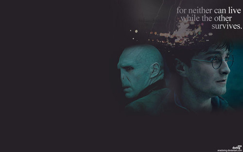 Harry and Voldemort - Deathly Hallows