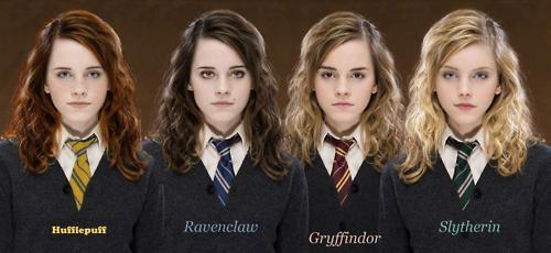Harry Potter Vs. Twilight wallpaper called Hermione Granger