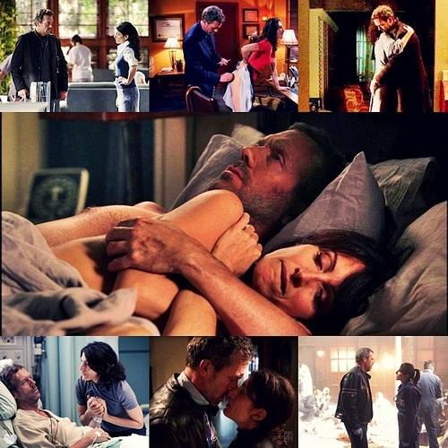 House & Cuddy through the seasons ^-^