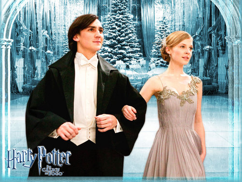 Official Brazil - Yule Ball - Fleur and Roger Davies