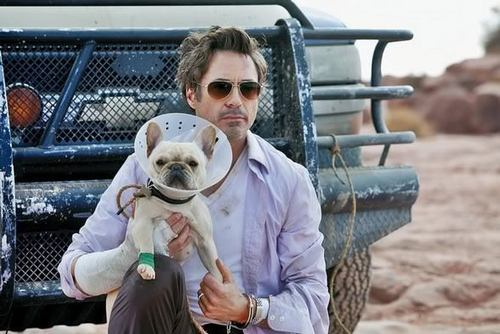 RDJ in Due Date♥