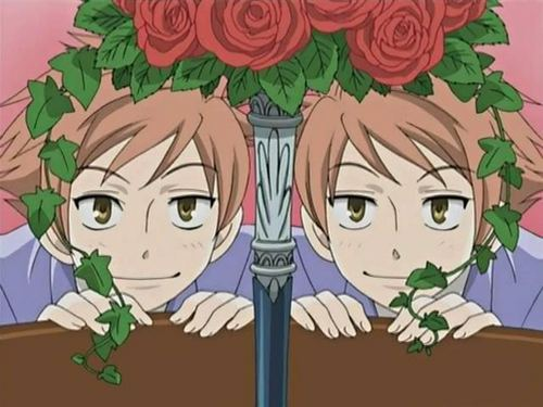ouran high school host club images the twins wallpaper and