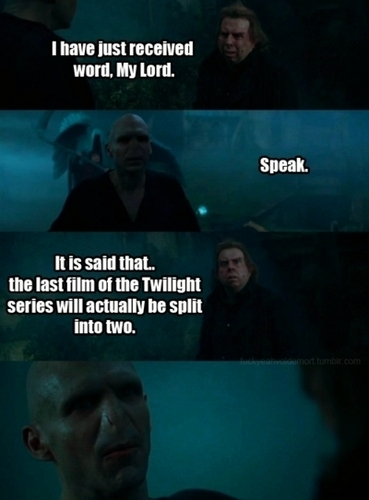 Voldemort reacts to Breaking Dawn