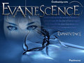 evanescence - Wallpaper wallpaper