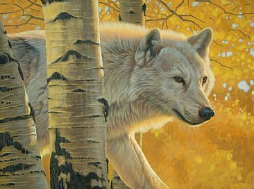 sneeky wolf