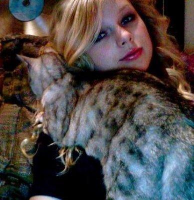 taylor cat lady