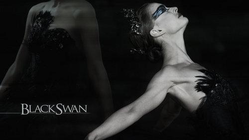 Black 白鳥, スワン DeviantART