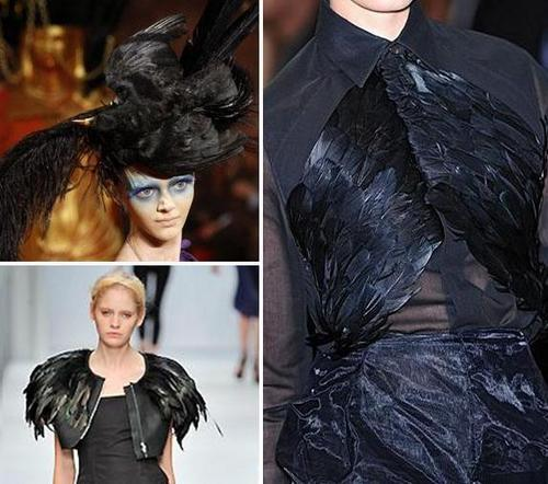 corvo Fashion