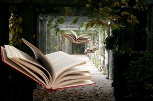 Flying Bücher