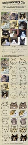 How to draw a warrior cat