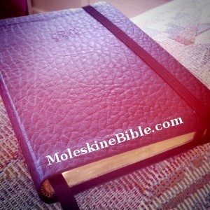 Moleskine Bible - moleskine Photo