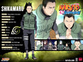 NarutoShippuden - naruto-and-naruto-shippuden wallpaper