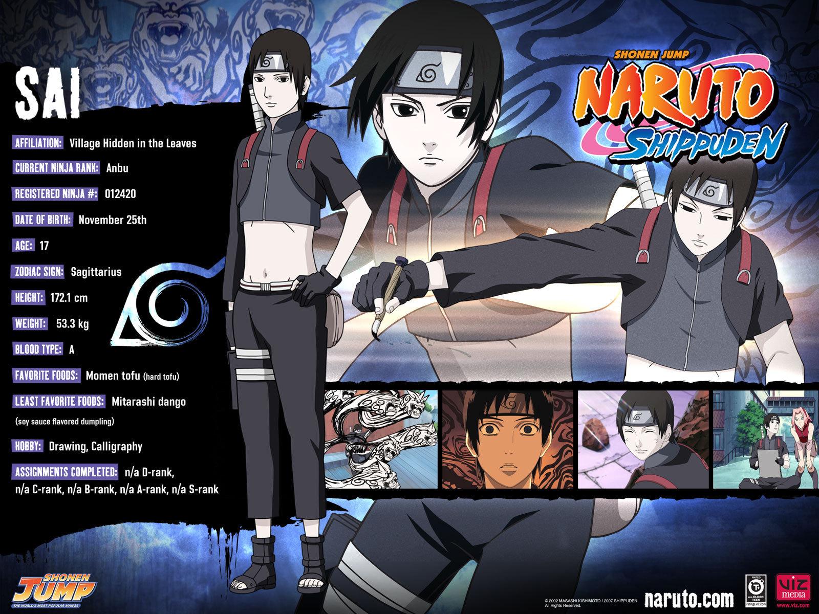 Naruto And Naruto Shippuden NarutoShippuden