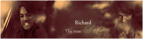 Richard The true Seeker - legend-of-the-seeker Photo