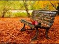 Romantic autumn - daydreaming wallpaper