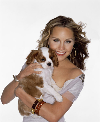Amanda Bynes wallpaper possibly containing a king charles spaniel and a blenheim spaniel titled Uknown Photoshoot