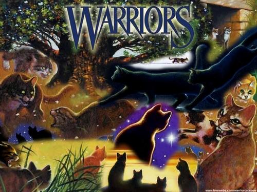 Warrior cat collage