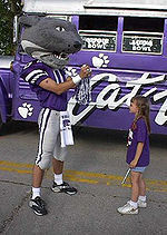K-state Wildcats fond d'écran entitled Willie The Wildcat!!!!!!!!!!!!!