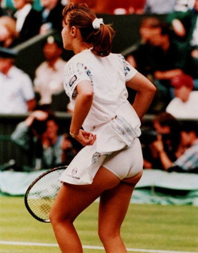 bronze hingis ass