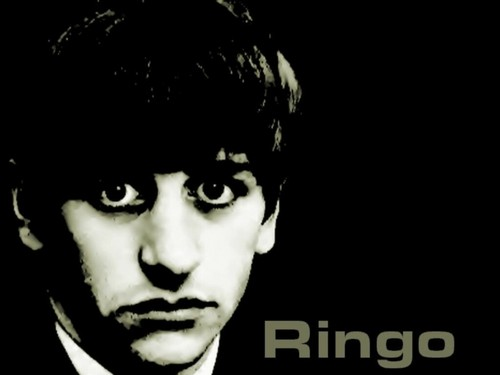 cute Ringo wallpaper