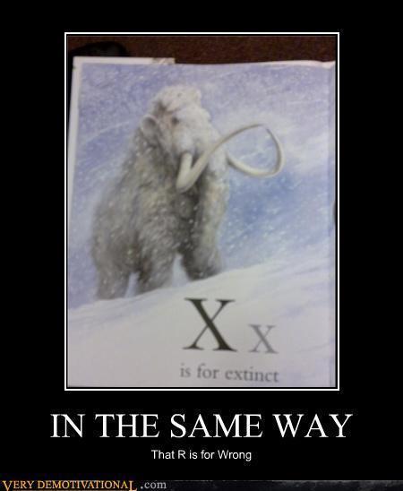 funny animals :))