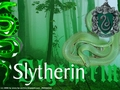 snake wallpaper - slytherin wallpaper