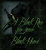 A Black Rose For Your Black Heart - teampeeta649 Icon