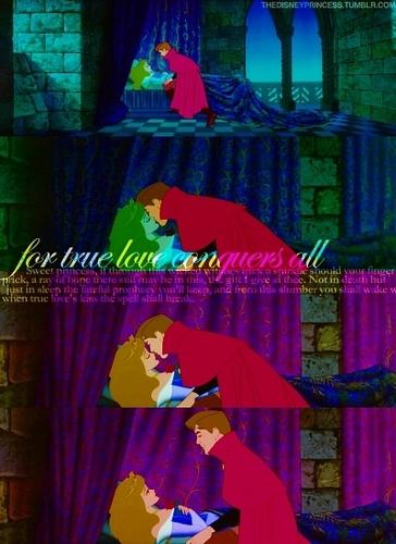 Princess Aurora achtergrond entitled Aurora and Phillip