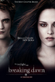 Breaking dawn cover's - twilight-series photo