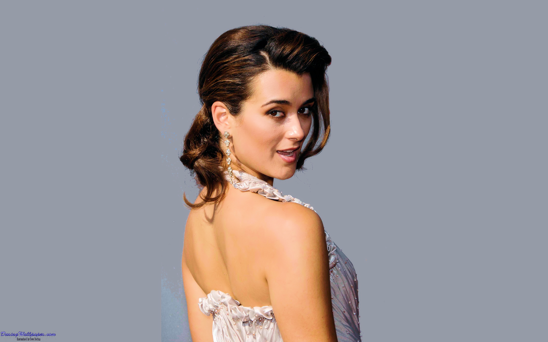NCIS Cote De Pablo (Ziva David) Wallpaper