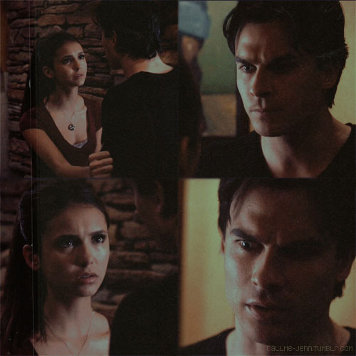Damon & Elena [2x13]