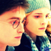 Harry & Hermione- 愛