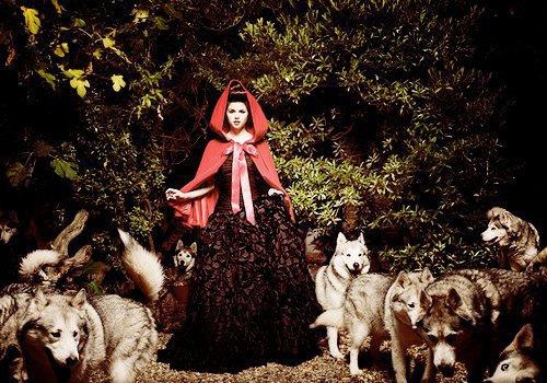 Little Red Riding 兜帽, 罩, 发动机罩