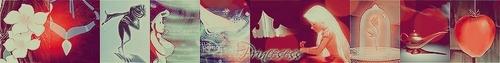 NEW Princesses Banner