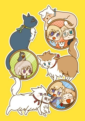 Hetalia wallpaper with anime titled Nordics Neko